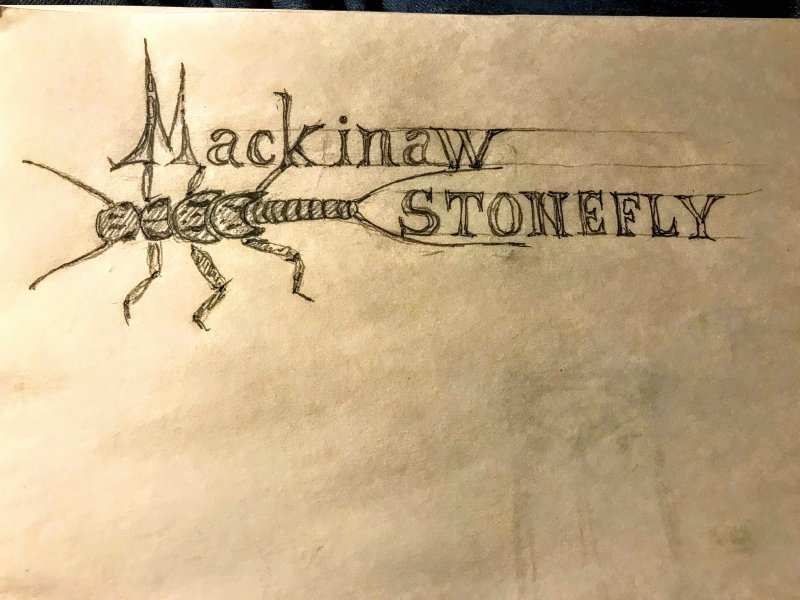 stonefly3.jpg